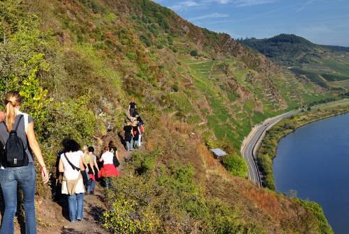 Klettersteig Calmont : Calmont region: neef urlaub und freizeit wandern klettern